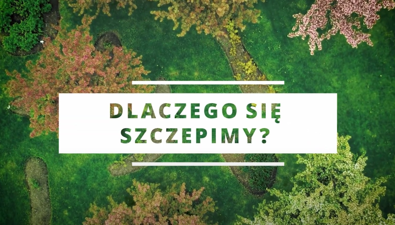 Polish - Why Do We Vaccinate?