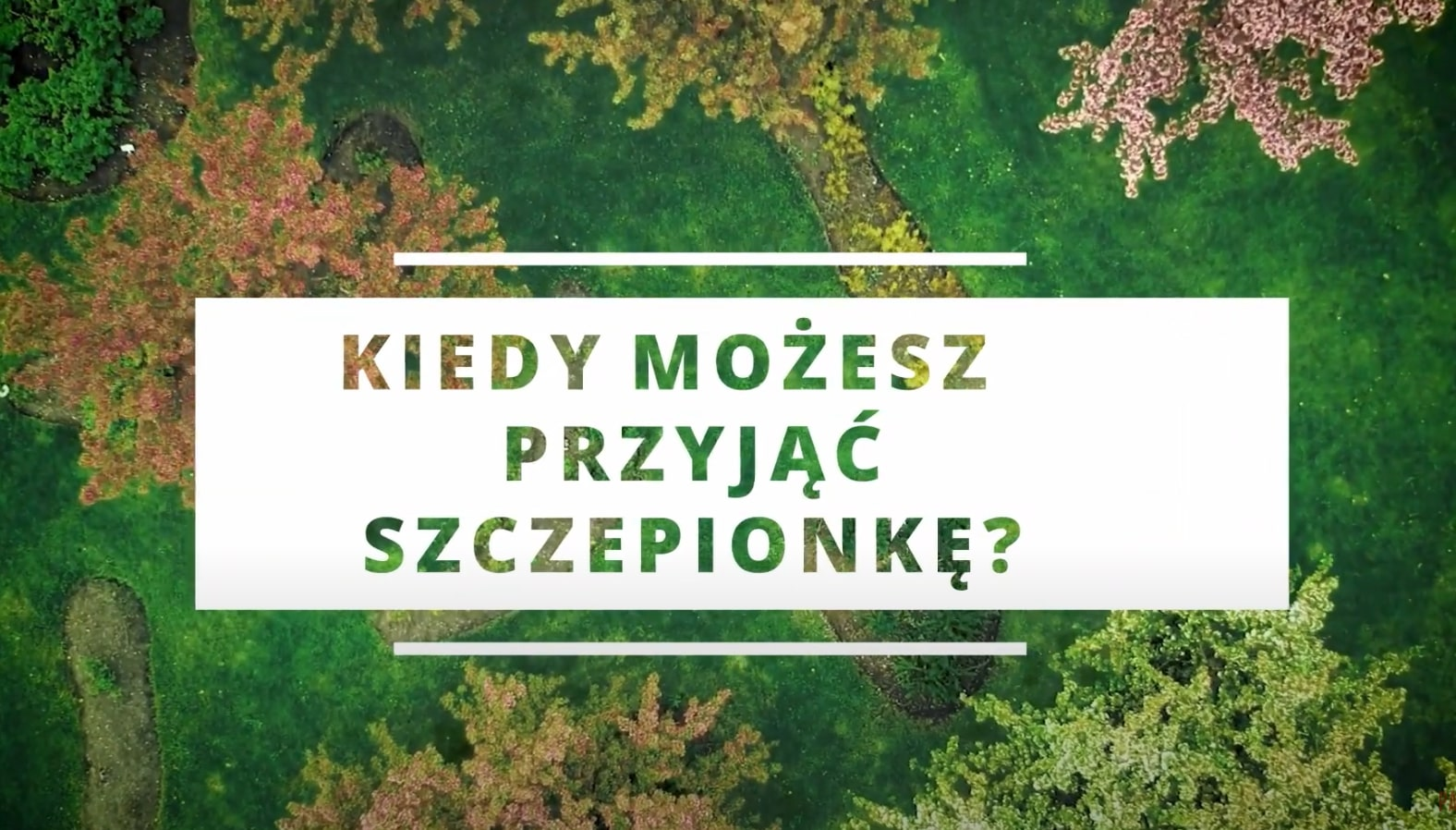 Polish - When Can You Get a Covid Vaccine? (Norway - When Can You Get a Covid Vaccine?