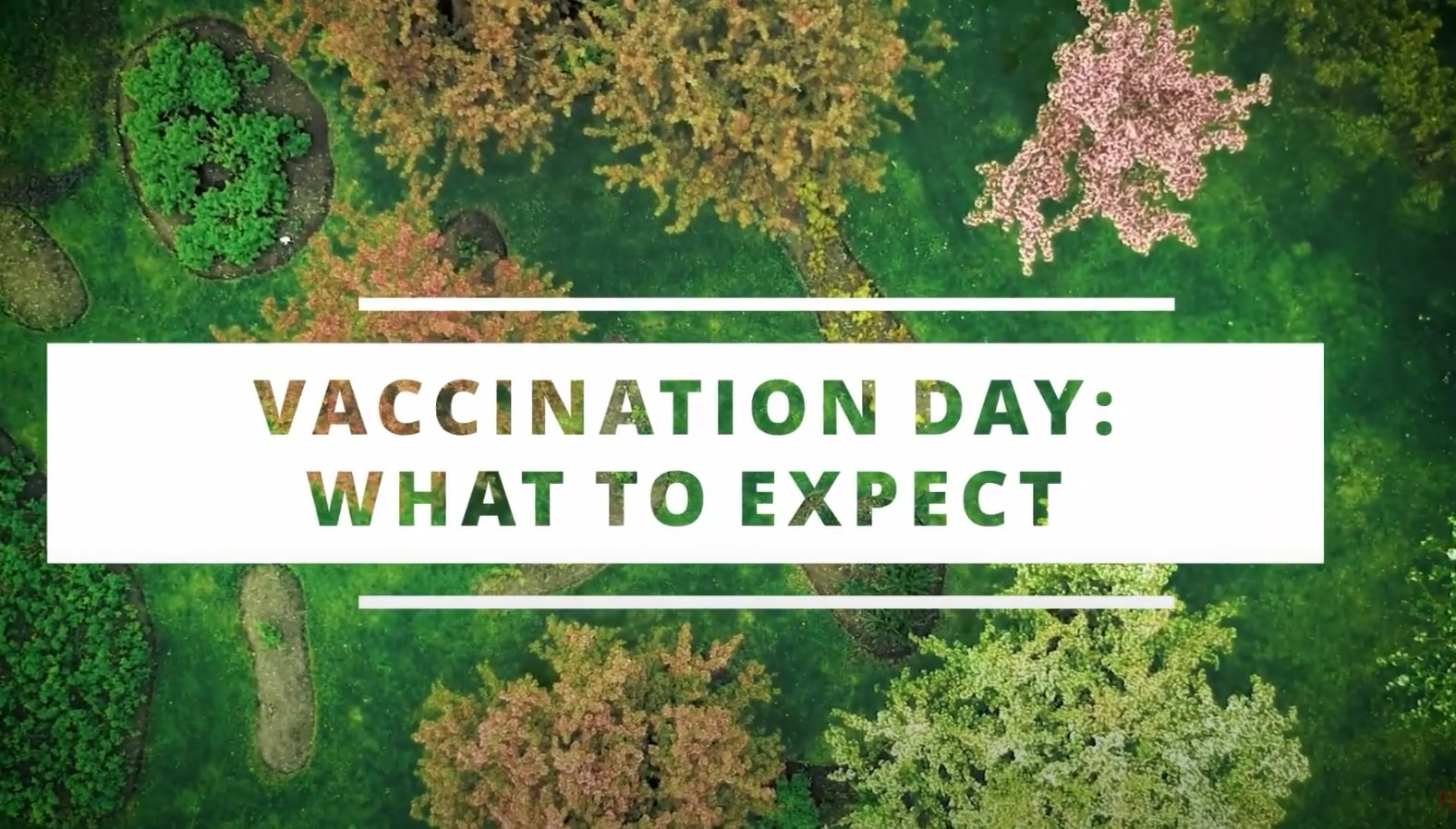Getting a Covid Vaccine in Norway: What to Expect