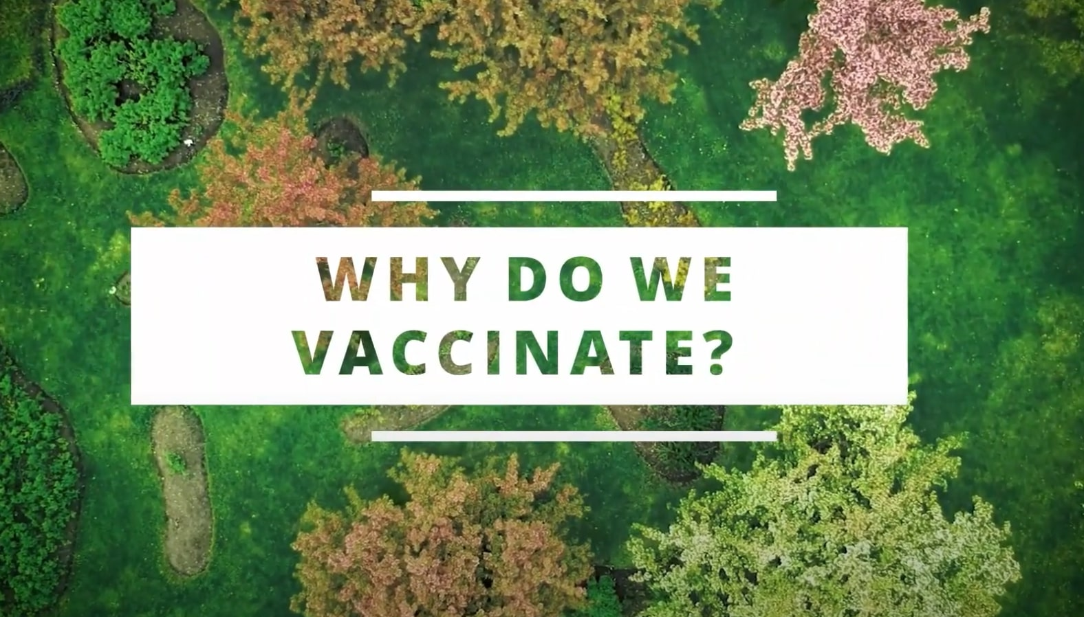 Why Do We Vaccinate?